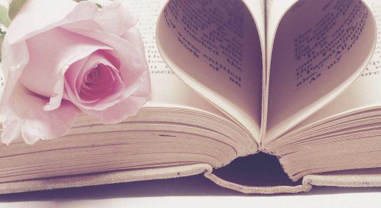Recensie De boekwinkel voor gebroken harten